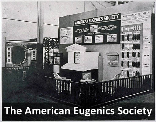 The American Eugenics Society